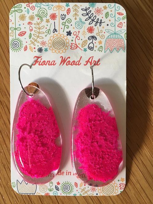 Petrified resin Earrings