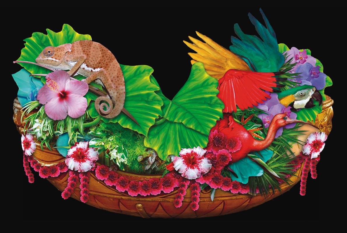 Carnaval set