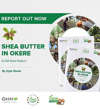 Okere_Shea_Report_Report_3.jpeg