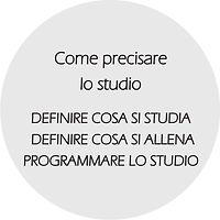 principi sito 2020 precisare studio.jpg