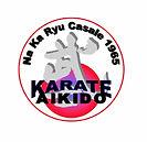 logo nakaryu karate aikido.jpg