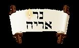Yeshiva Ner Aryeh Logo
