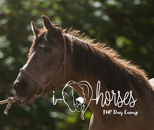 THP Horse Use Fee