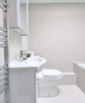 Espacious Accessible Bathroom