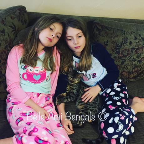 Katie bengal cat with girls.JPG