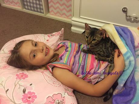 cat laying on Blair.jpg
