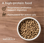high protein foods for bengal cats.png