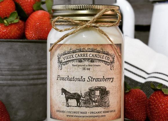 Ponchatoula Strawberry