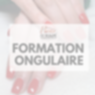fORMATION ONGULAIRE.png