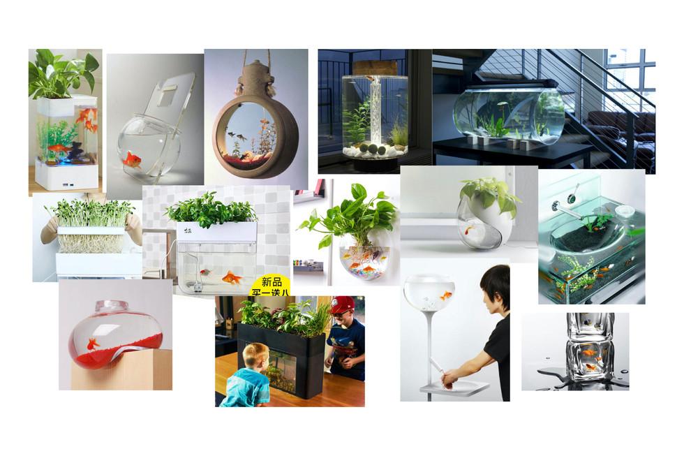 Aquaponics pics.005.jpeg