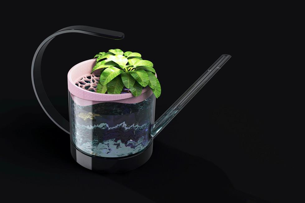 Aquaponics pics.012.jpeg