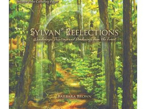Sylvan Reflections: Wanderings, Paintings and Ponderings from the Forest, by Barbara Brown