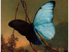 Metamorphosis: from the darkness of abuse to the light of empowerment