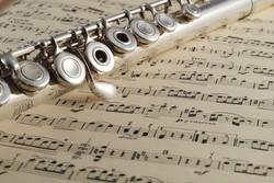 fluteparts-58ae116e3df78c345b38cb18