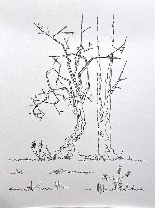 CHARLIE HUDSON: Drawing #1