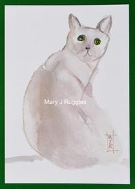 Sumie Cat