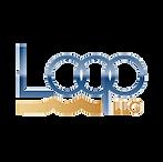 LOOP LLC