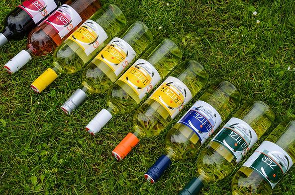Flaschen Topansicht.jpg