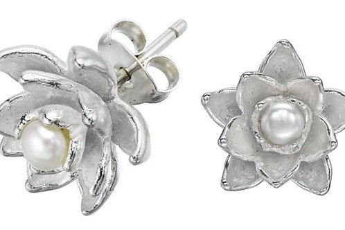 DOWER & HALL Orchid Sterling Silver Carved Freshwater Pearl Stud Earrings (R&C)