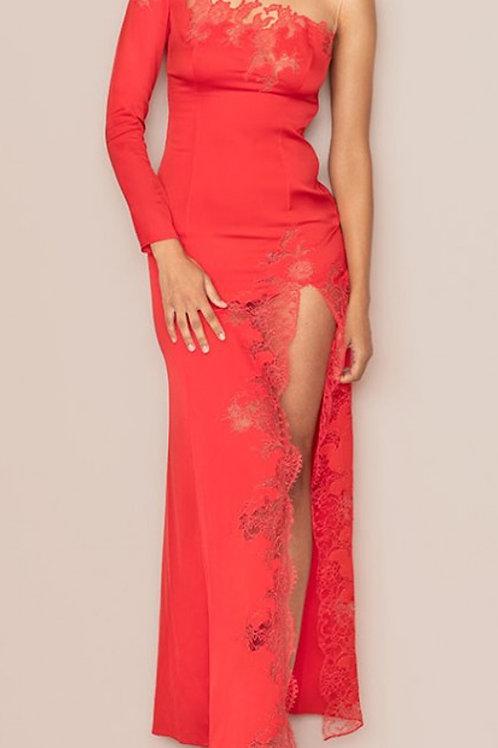 AGENT PROVOCATEUR Serayah Dress (RARE & COLLECTABLE)