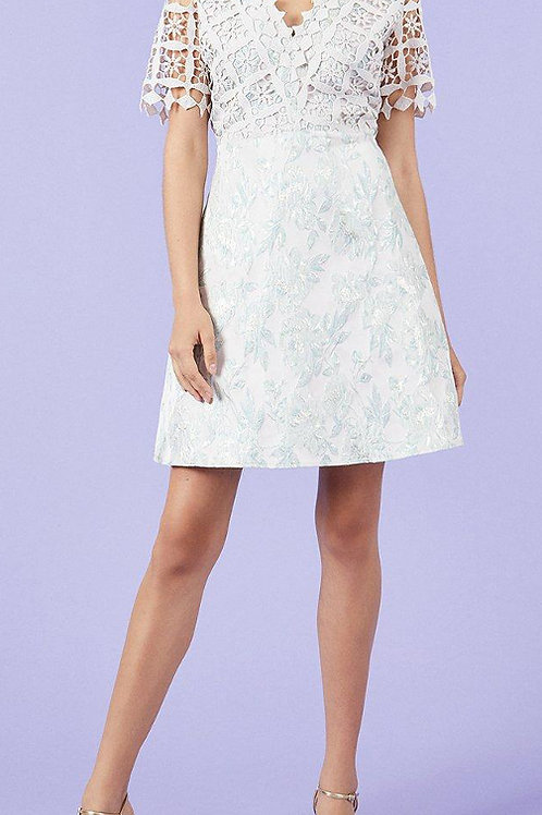 COAST Lace And Jacquard A-Line Dress(RARE & COLLECTABLE)