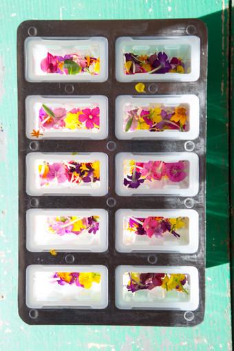 Edible Flower Icepops13.jpg
