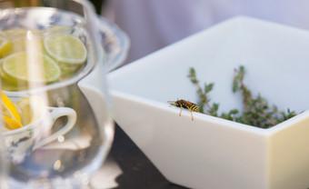 Madoo Luncheon08_1624.jpg