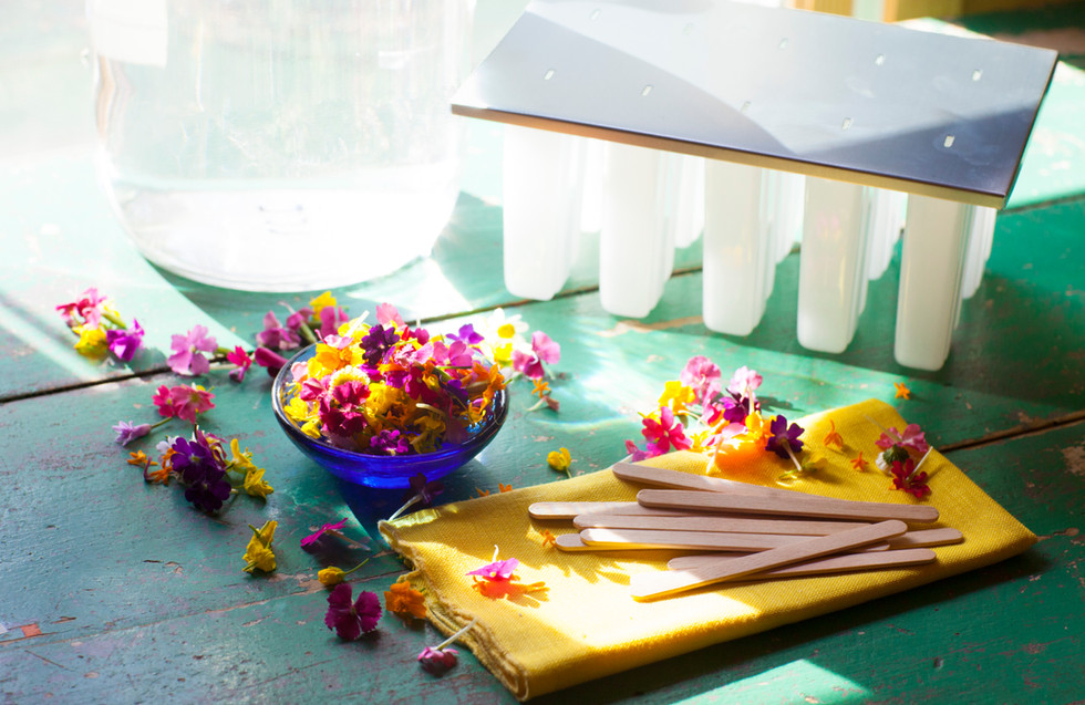 Edible Flower Icepops05.jpg
