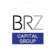 BRZ Investments logo