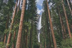 Yosemite_Falls_Spring2016_KLawson_Press_edited