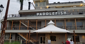 Paddle Fish - Paddle Away From It.