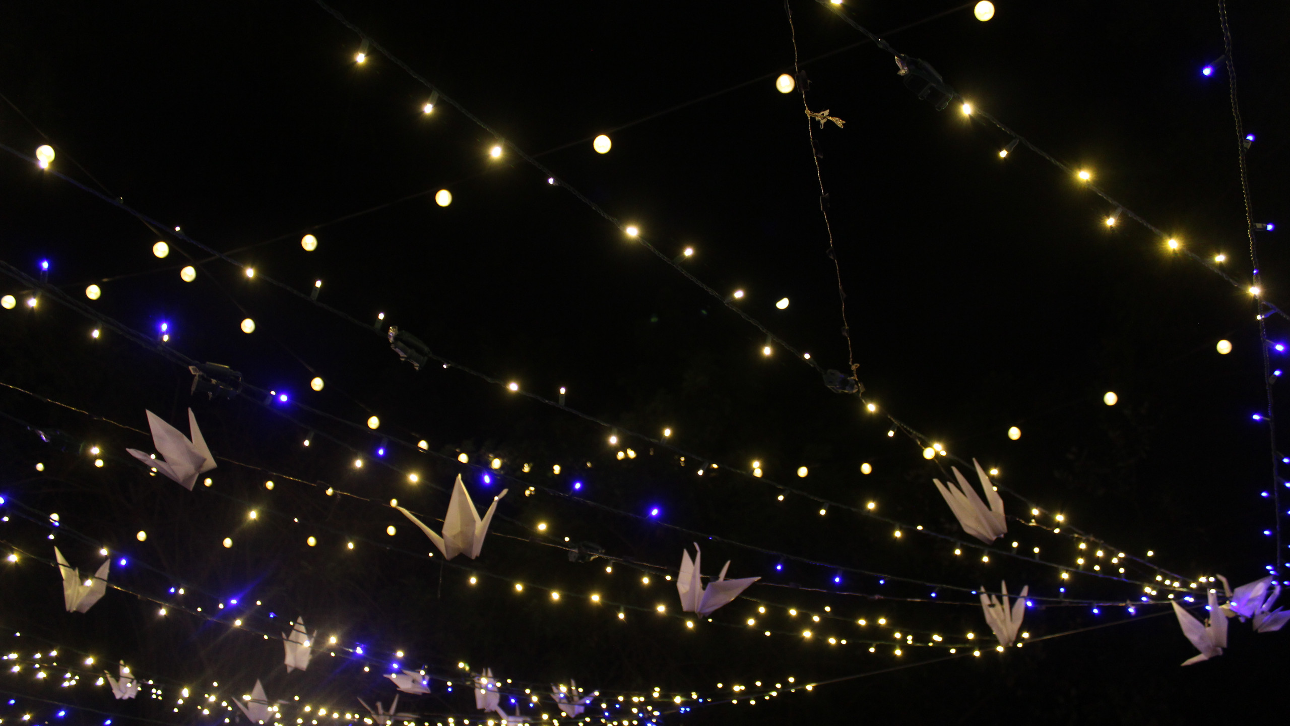 lights and Origami