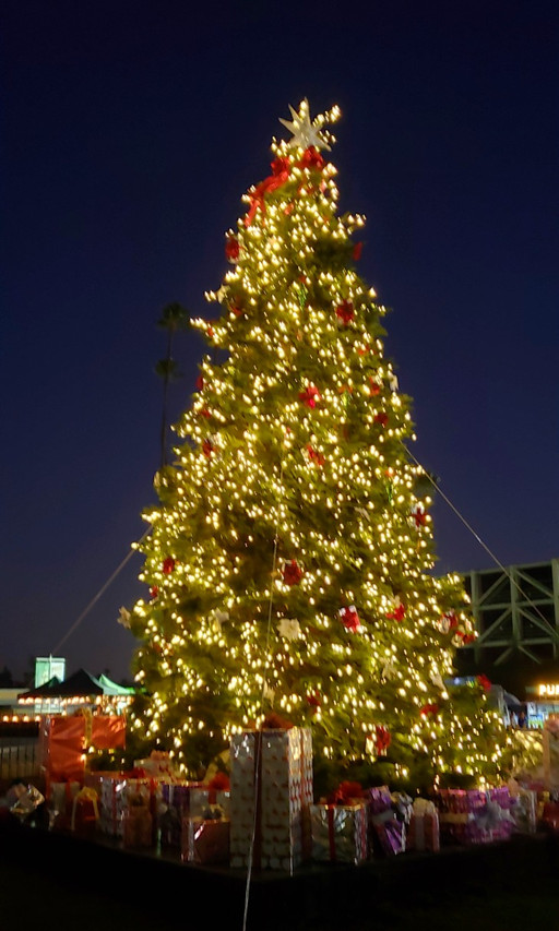 Christmas tree at SA Winterfest