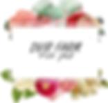logo dvir.png