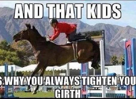 7 feiten over singels waarvan je paard zou willen dat je ze weet!