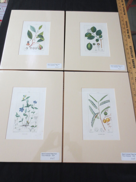 AFP555 Flower Print Series