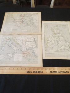 Vintage German herbarium specimens from a collection assembled circa 1914 by Görres