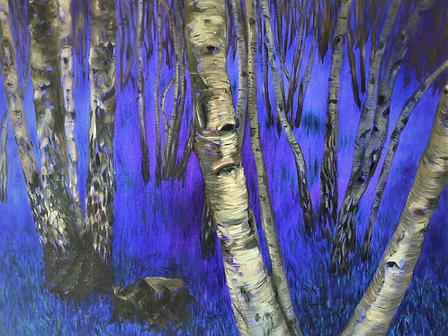 Signed Giclee print of Birch & Bluebell Wood