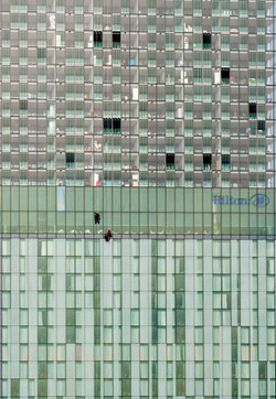 Window Cleaning The Hilton