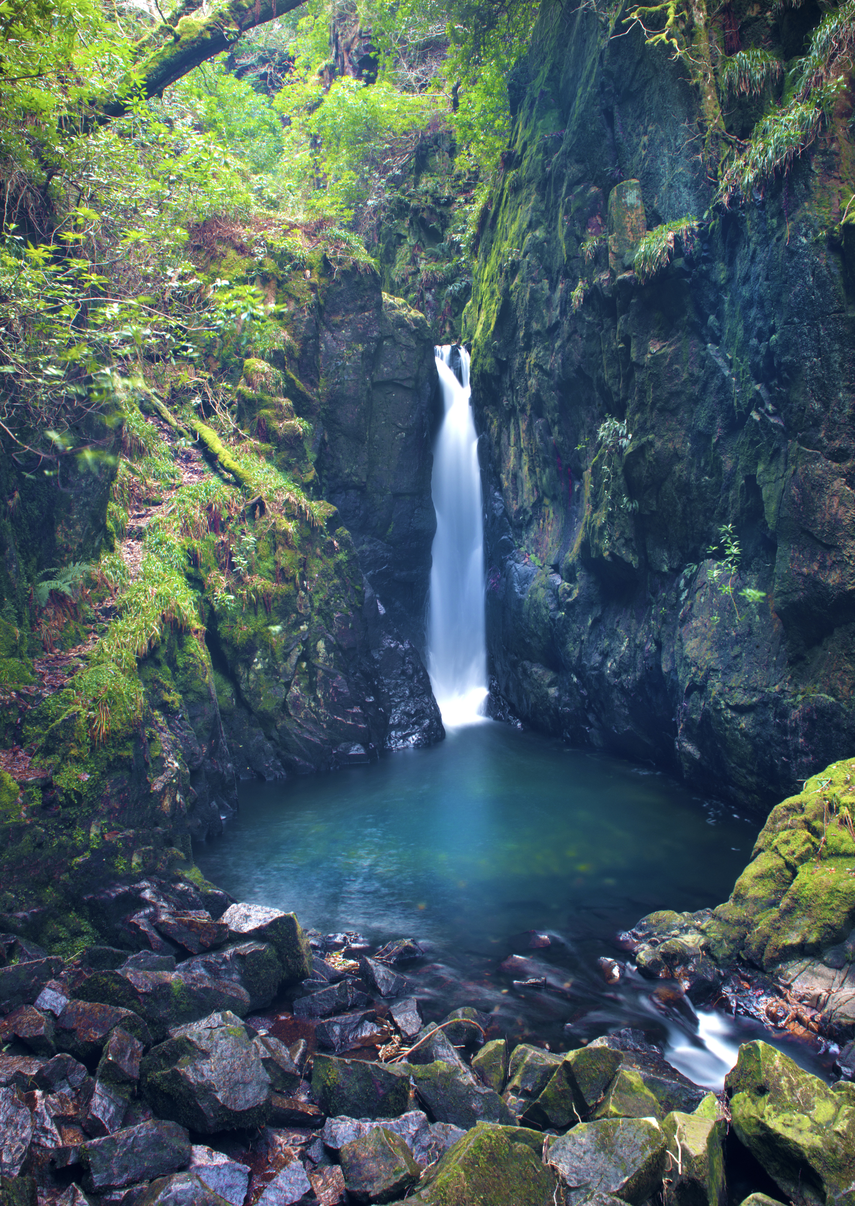 Stanley Force Waterfall