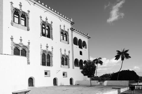 Palace and Palm Tree