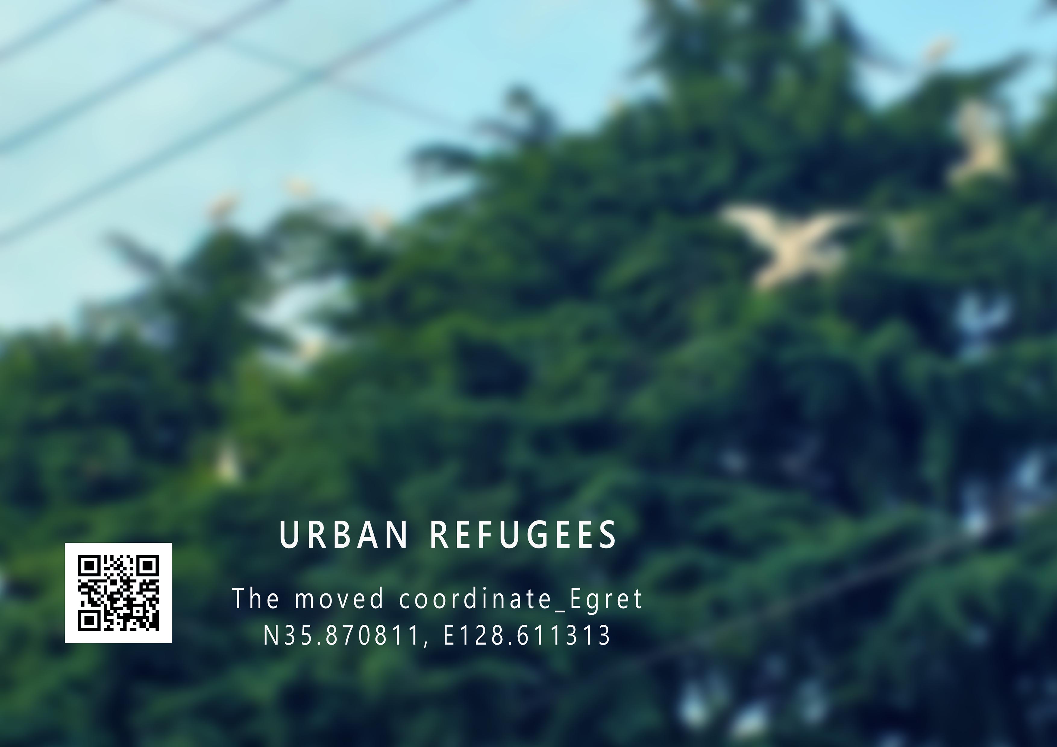 Urban refugees_2016
