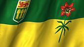 Flag SK.jpg