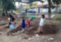 הגינה הקהילתית - קהילת הדרור