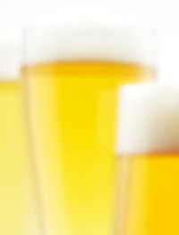 La Raiz Bohemian Pilsner Raices Brewing Compay