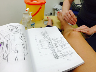 Acupuncture Training - The First Weekend