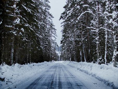 ANALIZA KOLORYSTYCZNA CZYLI 4 PORY ROKU - zima