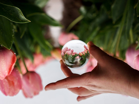 Get Creative with Lens Ball Photography!