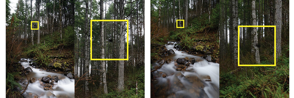 Dark spots in your photos are a good indicator of debris on your sensor
