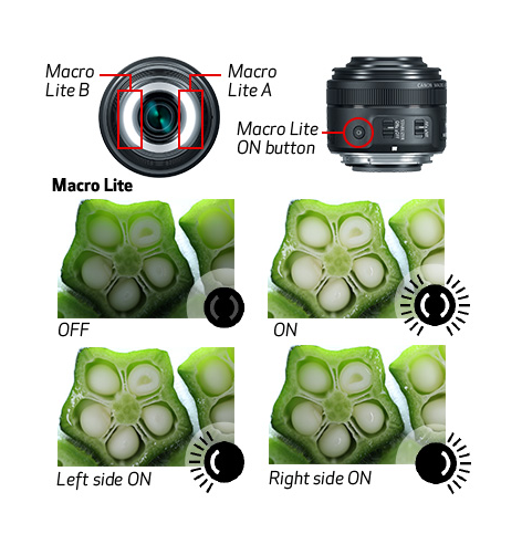 EFS 35mm f/2.8 Macro comes with a built-in LED ring light!